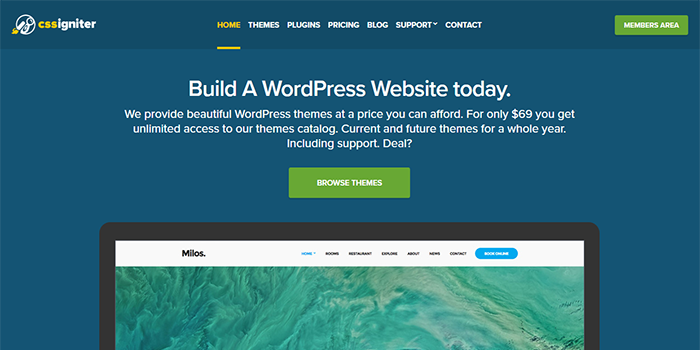 buy premium and affordable WordPress themes